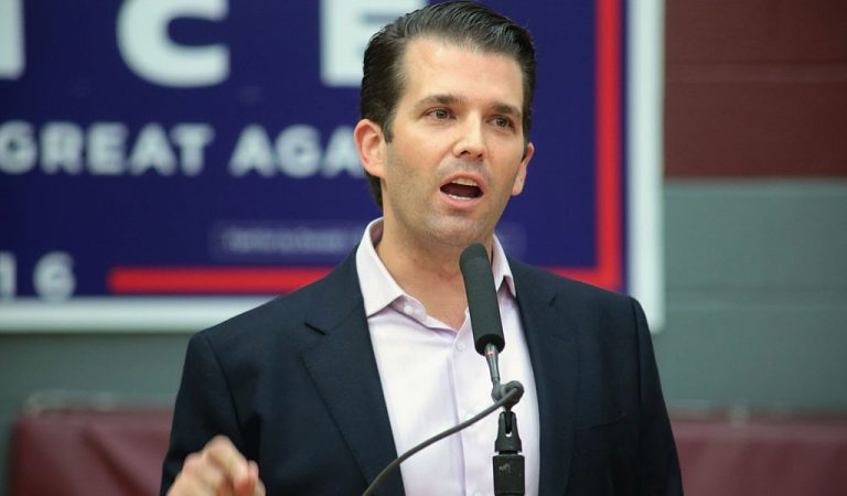 Donald Trump Jr. Just Committed Perjury, Lied To Congress; Faces Major Jail Time