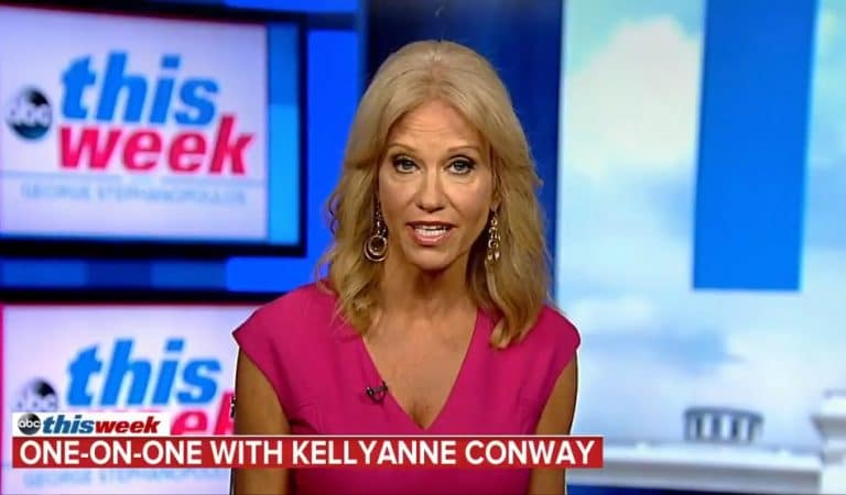 Kellyanne Conway Loses Her Sh*t After Reporter Tells Her She's Repeatedly Broken The Law