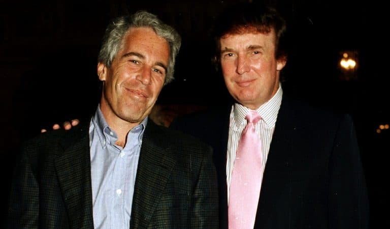 Jeffrey Epstein Just Bragged About Introducing Trump And Melania, POTUS Freaking Out