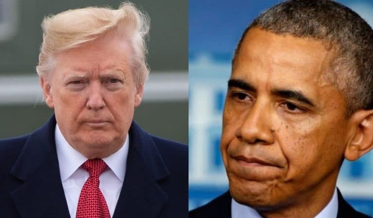 "Report Claimed Obama Blistered Trump During Private Phone Call: ""I Am Going To Be Campaigning For Joe Biden As Hard As I Can"""