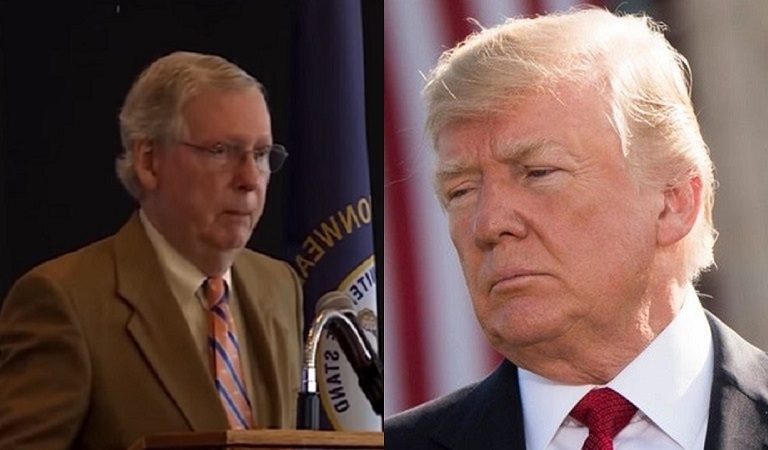 """Reporter Claimed He Approached McConnell To Question Him About Trump, Said Mitch Refused To Answer And """"Took Off"""""""
