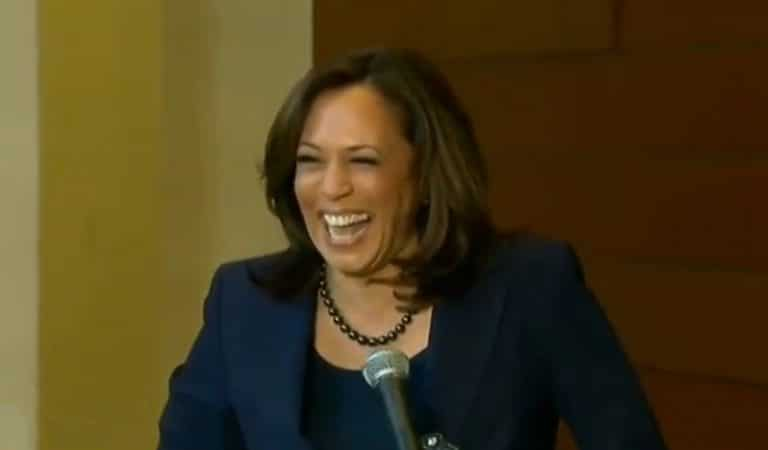 Kamala Harris Responds To Don Jr. After He Mocked Her On Twitter, Doesn't Hold Back