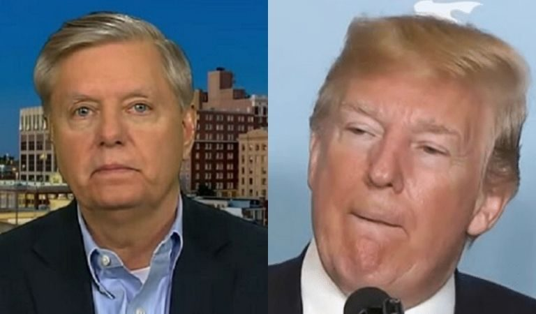 """As Graham Defends Trump During Hearing, Video Resurfaces Of POTUS Trashing The Senator: """"One Of The Dumbest Human Beings On Earth"""""""