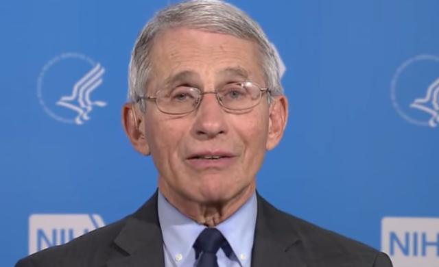 """Dr. Fauci Breaks His Silence On Trump And His Handling Of COVID-19: """"I Can't Jump In Front Of The Microphone And Push Him Down"""""""