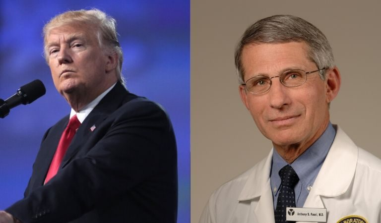 Trump Was Reportedly Furious As He Watched Fauci On Television Seemingly Taking Digs At Him During Interviews