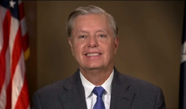 """Graham Announced On Twitter That He Filed Paperwork To Appear On The Ballot For US Senate, Asked """"Will You Stand With Me?"""" Americans Answered Him"""