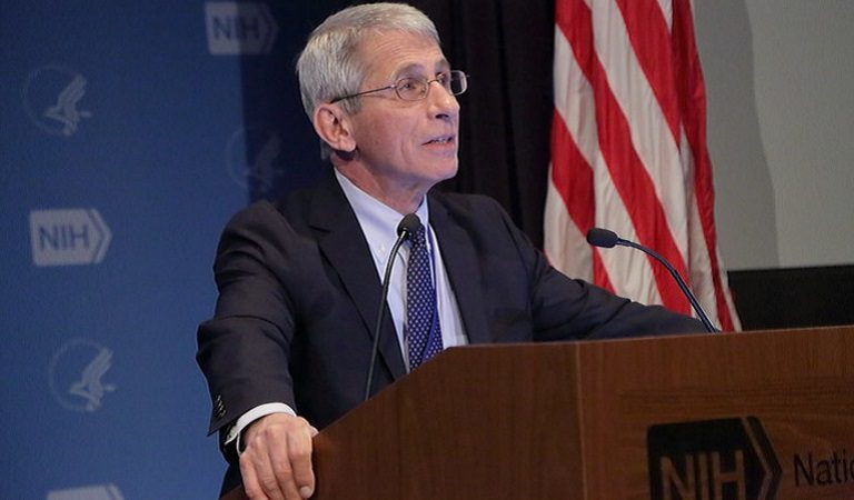 """Americans Are Encouraging Dr. Fauci To Resign And Speak Out After Trump Reportedly Called Him A """"Disaster"""" During Campaign Call"""