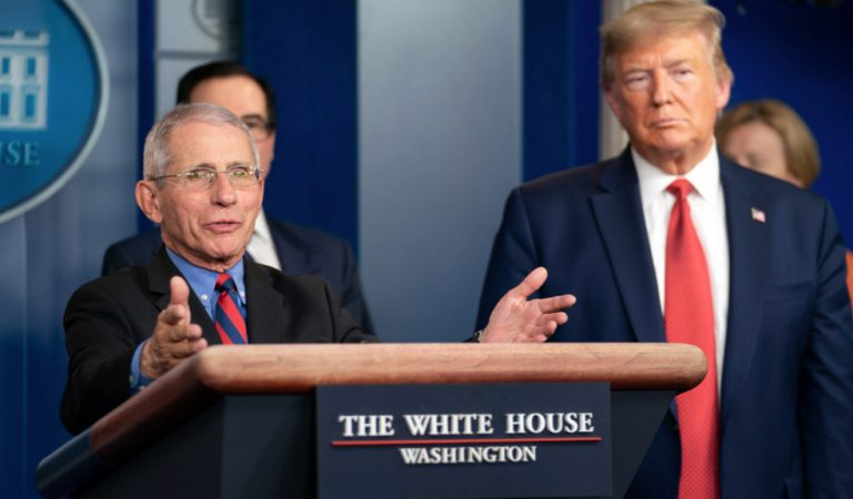 Dr. Fauci Appeared To Call Out Trump's Lies During An Interview In Such A Way That POTUS Probably Didn't Understand He Was Being Called A Liar