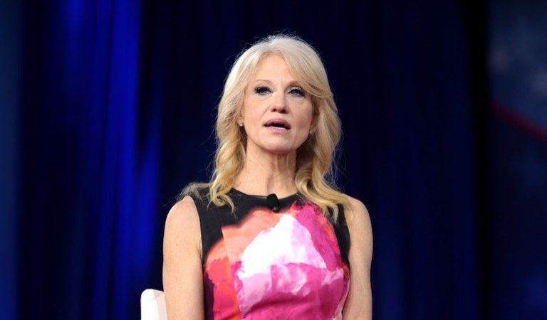Kellyanne Conway Says Joe Biden Does Not Have A Plan, Fox News Host Was Not Having Any Of Her Lies