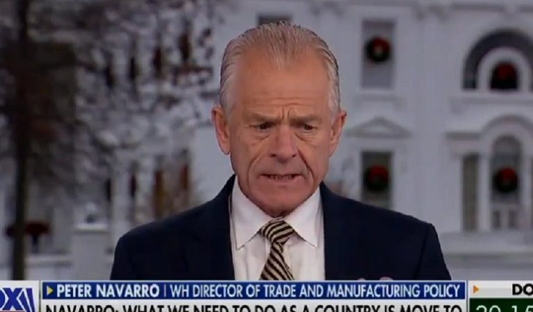 """White House Adviser Peter Navarro Argued """"This Election Was Stolen"""" — And Fox News Anchor Shot Back: """"More Than 24 Judges Do Not See That"""""""