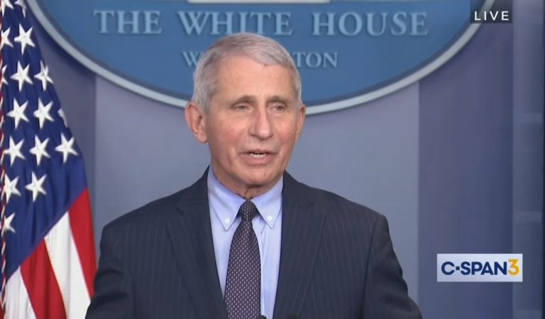 Dr. Fauci Holds First Public Briefing Under Biden Administration And Seems To Take Aim At Donald Trump Multiple Times