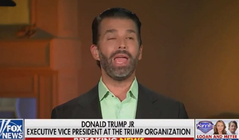 """Americans Are Questioning Don Jr's Cognitive Function As He Appeared To """"Short Circuit"""" During Recent Fox Appearance"""